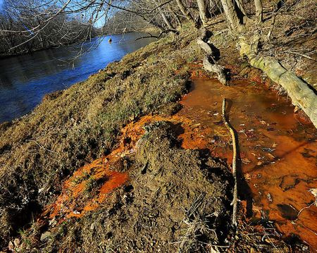 Creek Pollution
