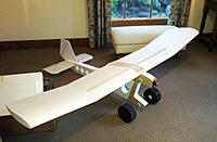 Pig Blood Plane