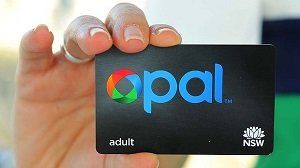 IMAGE: A person holds the OPAL card