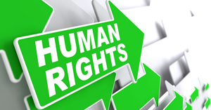 IMAGE: The word Human Rights is spelt out in white letters on one of many green arrows.