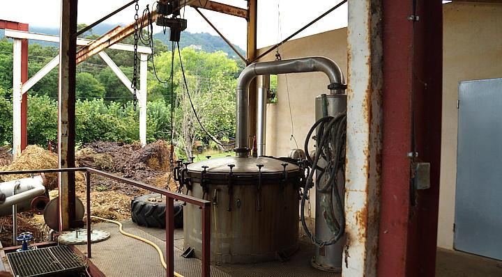 reusachtige alambieks voor de productie van etherische olie