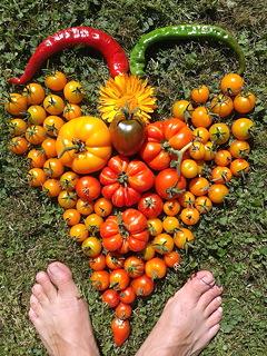 tomatenmandala met twee pepers en een goudsbloempje