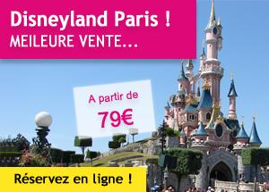 Disneyland® Paris un jour / un parc (en bus)