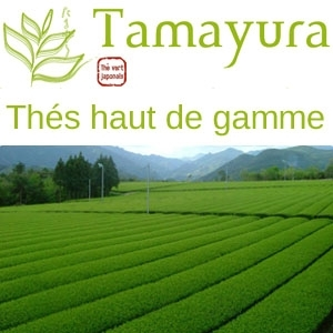 thé vert Tamayura